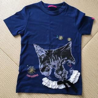 アースミュージックアンドエコロジー(earth music & ecology)のネコ Tシャツ(Tシャツ(半袖/袖なし))