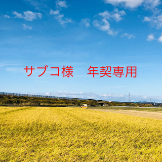 【サブコ様年契専用】令和2年度こまち玄25kg②ひとめ玄25kgコシ玄25kg (米/穀物)