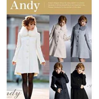 アンディ(Andy)のAndy ファー コート(毛皮/ファーコート)