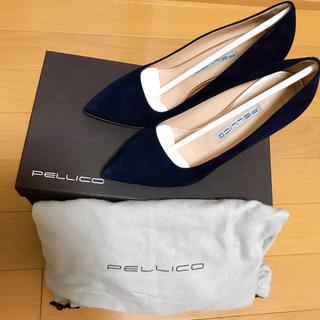 PELLICO - ペリーコ ネイビー
