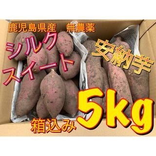 鹿児島県産 無農薬 シルクスイートと安納芋 箱込み5kg(野菜)