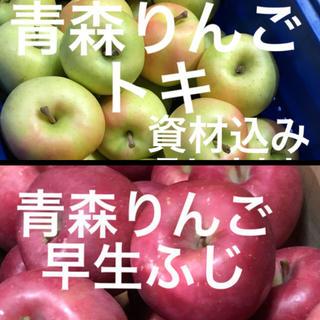 青森県産りんご 早生ふじ トキ 2品種