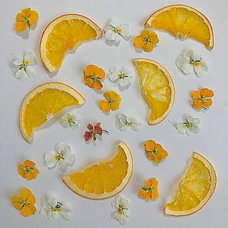 ドライフラワー、オレンジ、花材(ドライフラワー)