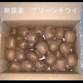 【無農薬】グリーンキウイ キウイフルーツ 要追熟(フルーツ)