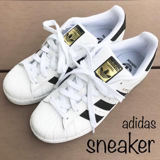 adidas - adidas★アディダス★スニーカー★スーパースター★25.0㎝