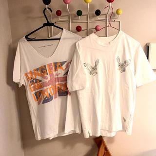 sacai - おまけつき A(LeFRUDE)E フクロウ刺繍 Tシャツ