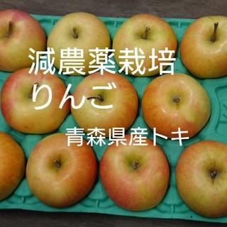減農薬栽培りんご 青森県産トキ