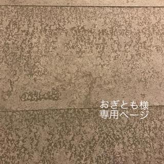 おぎとも様 専用ページ(ピアス)