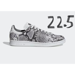 adidas - 22.5cm adidas スタンスミス スネークスキン