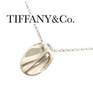 Tiffany & Co. - ティファニー Pt950 アクエリアス プレート ネックレス