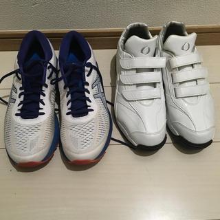 adidas - トレーニングシューズ