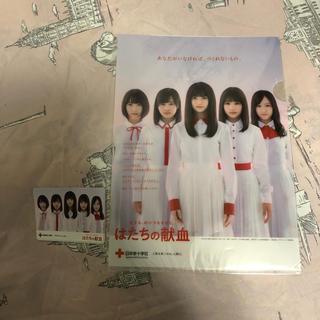 ノギザカフォーティーシックス(乃木坂46)の乃木坂46 クリアファイル(女性タレント)