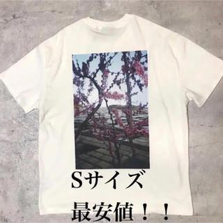 フィアオブゴッド(FEAR OF GOD)の今日限定価格 Sサイズ ESSENTIALS フォトシリーズTシャツ(Tシャツ/カットソー(半袖/袖なし))