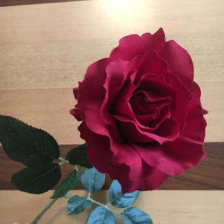 IKEA - IKEA 薔薇