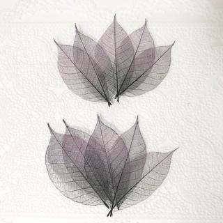花材 スケルトンリーフ 計10枚 (パープル&ブラック グラデーション)(ドライフラワー)