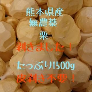 【即購入OK】熊本県産 むき栗 1500g ★無農薬・有機栽培☆(フルーツ)