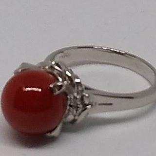 PT900 超希少 最高級 血赤珊瑚 リング 指輪《最上級ランク サンゴ》プラチ(リング(指輪))