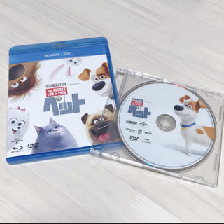 ミニオン(ミニオン)の未再生 ペット DVD(キッズ/ファミリー)