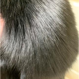 カシミヤ  ロングコート  ブルーフォックス  ファー 確認用(毛皮/ファーコート)