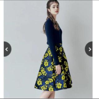トッカ(TOCCA)の極美品 ストロベリーフィールズ スカート(ひざ丈スカート)
