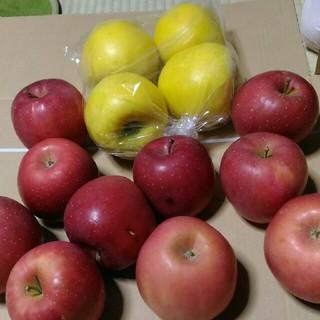 ご家庭用 りんご シナノゴールド 彩香姫 4.5kg(フルーツ)