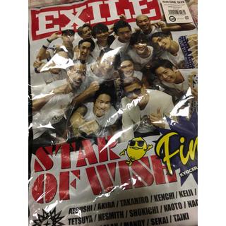 エグザイル(EXILE)のEXILE フォトTシャツ(その他)