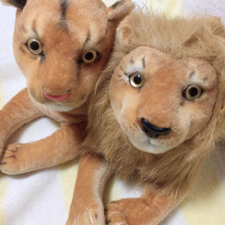 リアルアニマル ライオン 2匹セット(ぬいぐるみ)