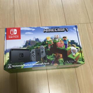 Nintendo Switch - 任天堂switch+マインクラフト