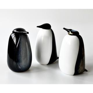 イッタラ(iittala)のオランダ限定 100体 ペンギンとPenguin Grey Belly(置物)