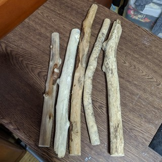 天然流木 太いもの 5 本 40~44cm 【25】 (各種パーツ)