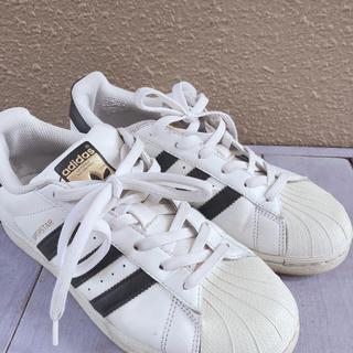 adidas - adidasシューズ