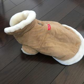 犬ダックスフンド 冬コート