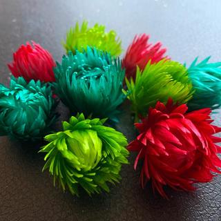 SALE ミニシルバーデージー クリスマスカラー 8輪 ハーバリウム花材(ドライフラワー)