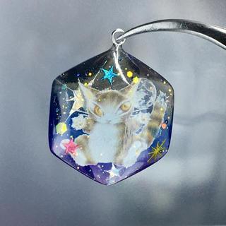 ✨星✨猫✨ ネックレス(ネックレス)