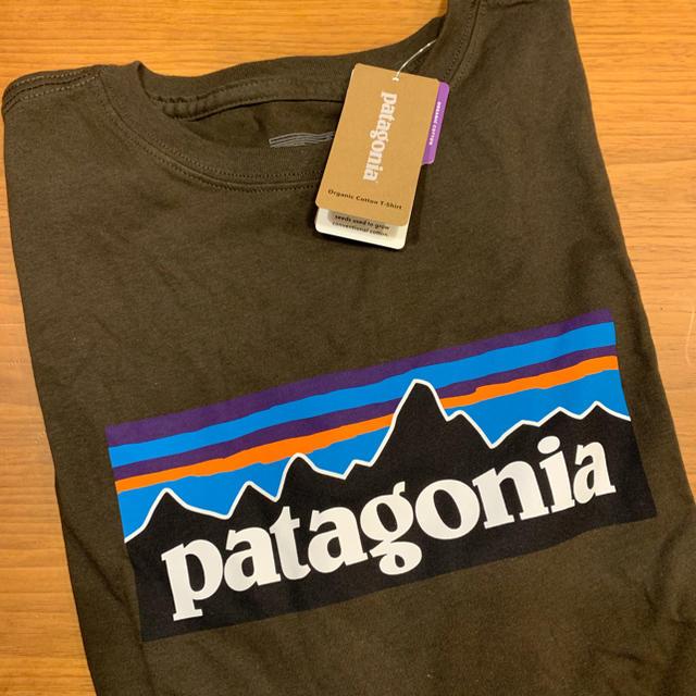 patagonia(パタゴニア)のパタゴニア 今期ロンT レディースのトップス(Tシャツ(長袖/七分))の商品写真
