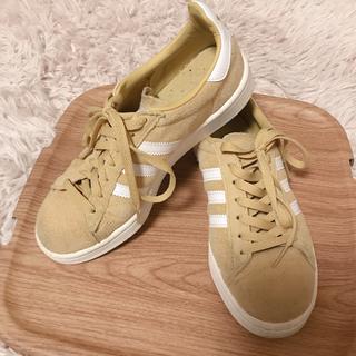 アディダス(adidas)の美品23.5 adidas CAMPUS アディダス キャンパス B212(スニーカー)