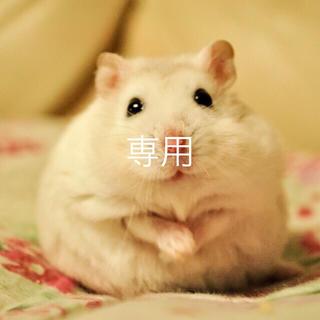fu-ka様専用ランジェリーセット(その他)