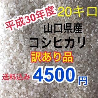 平成30年度 山口県産コシヒカリ20キロ 訳あり品