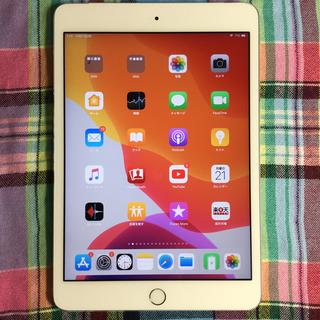 Apple - iPad mini セルラー&Wi-Fiモデル ネットワーク判定◯ 端末代金完済
