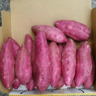 宮崎紅 さつまいもほくほく13~18本 (2kg)