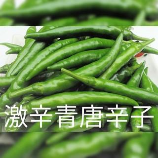 激辛青唐辛子❗ 無農薬栽培の自家製 1kg