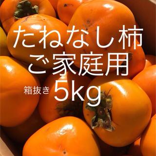 たねなし柿 5kg