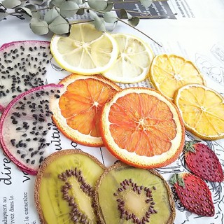 押しフルーツ6種花材イチゴレモンキウイオレンジドラゴンみかんドライフルーツ(ドライフラワー)