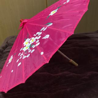 インテリア傘(傘)