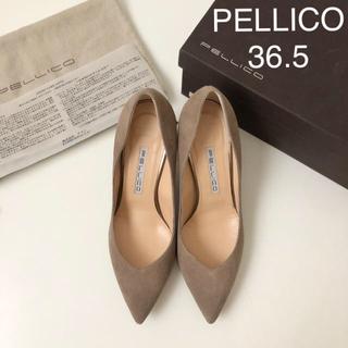 PELLICO - 美品 ★ ペリーコ Vカット スエードパンプス 36.5
