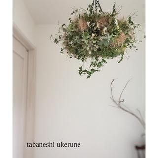 スモークツリーと秋色紫陽花の柔らかな風合いの フライングリース ドライフラワー(ドライフラワー)
