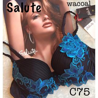 ワコール(Wacoal)の【新品タグ付】wacoal/SaluteサルートC75(ブラ)