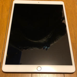 Apple - iPadpro10.5 ローズゴールド  512ギガ❗️防水防塵対衝撃ケース付き