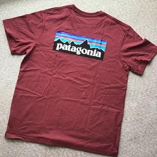 patagonia - ★2019秋冬モデルカラー P-6 ロゴポケットレスポンシビリティー 39178