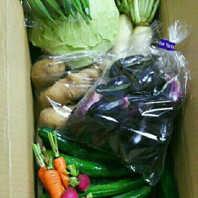 無農薬*お野菜セット 80サイズ 食品/飲料/酒の食品(野菜)の商品写真